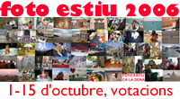 anar al formulari per votar!