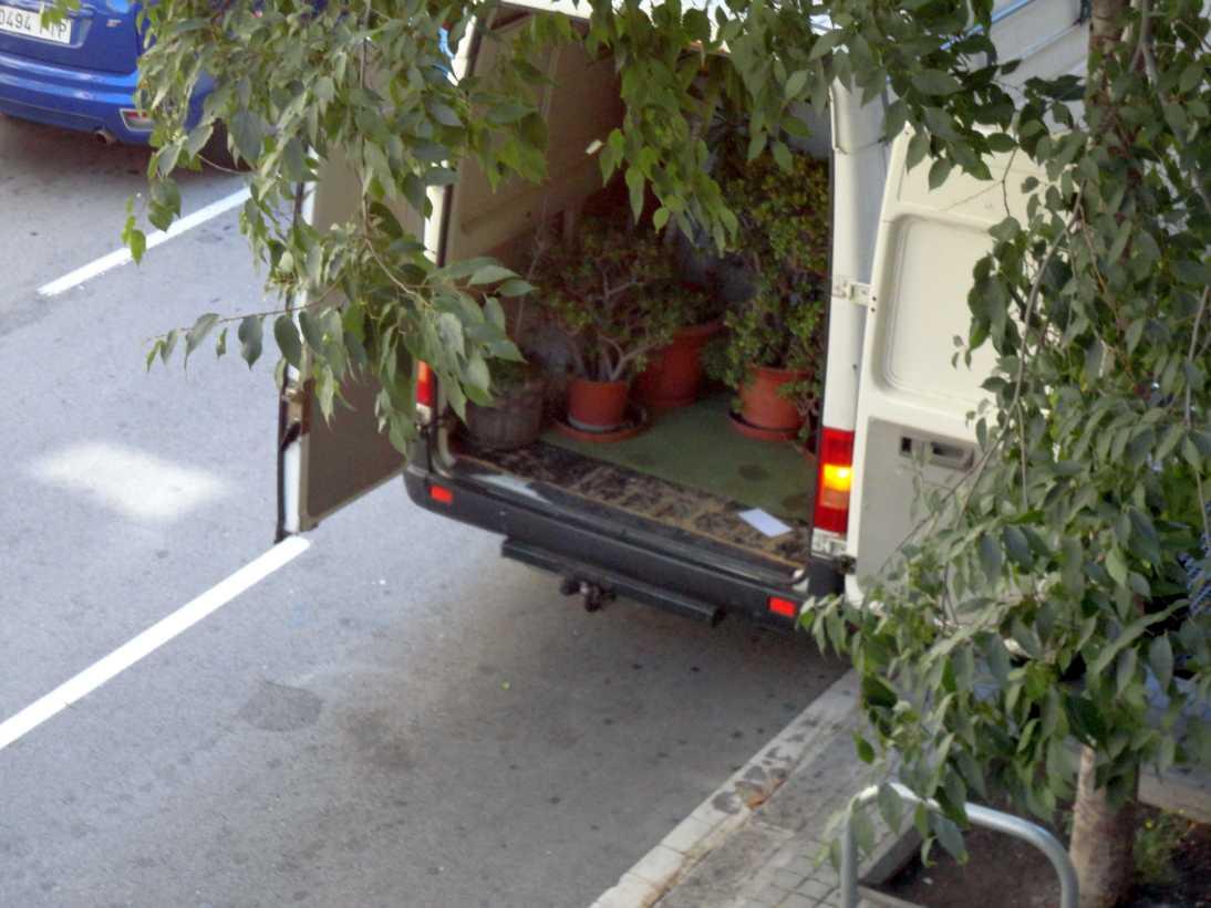 les plantes de Ca la Dona cap a Sants, en acolliment per Creación Positiva