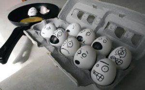 de quines gallines són?