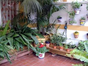 inspiració pel model 1: jardinera rectangular
