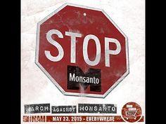 7/05:: S'acosta la Marxa contra Monsanto 2015